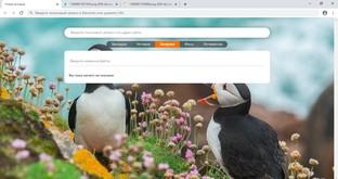 Elements Browser скриншот