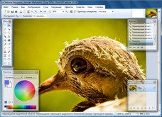 Paint.NET скриншот
