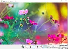 Light Image Resizer скриншот